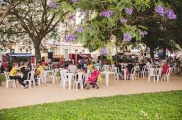 Eu Amo a Praça comemora o Dia da Árvore com preservação ambiental