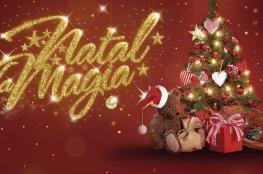 Norte da Ilha recebe evento de Natal no bairro Ingleses